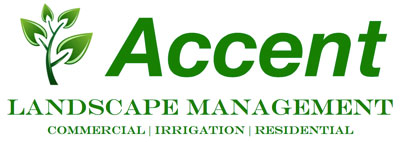 Accent Landscape Management Logo